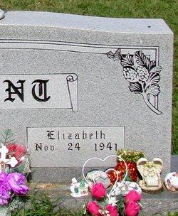 Elizabeth Josephine Jo <i>Hale</i> Arant