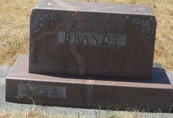 Robert W Brandt
