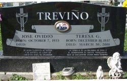 Teresa <i>Galvan</i> Trevino