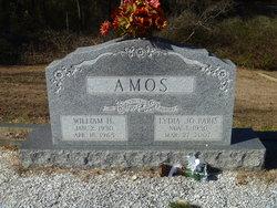 William H. Amos