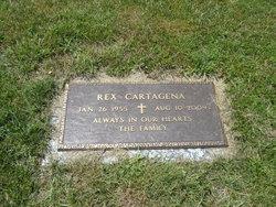 Sr Rex Cartagena