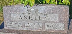 Harry Osborn Ashley