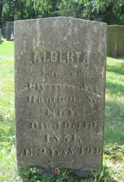 Albert Ely