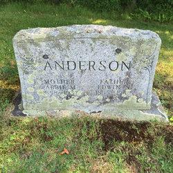 Abbie M Anderson