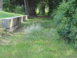 Knockum Hill Cemetery