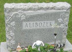 Monica B <i>Stawarz</i> Alibozek
