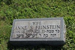 Anne <i>Selwyn</i> Feinstein