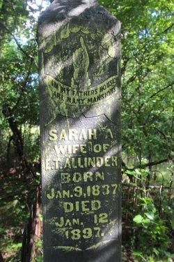 Sarah Ann <i>Steen</i> Allinder