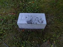 Louisa M. <i>Daniels</i> Cook