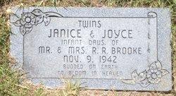 Joyce Brooke