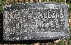 Emily H Willard