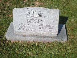 Elizabeth Anna Annie <i>Clemmer</i> Bergey