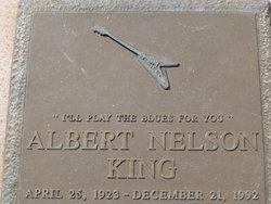 Albert Nelson King