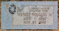 Warren Wesley Little Wesley Wiggins, Jr
