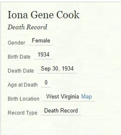 Iona G. Cook