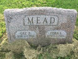 Gaius S. Mead
