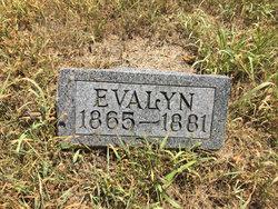 Evelyn Beesley