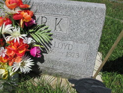 Lloyd Homer Clark