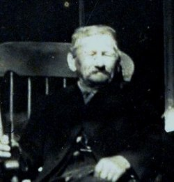 Albert Hibbard