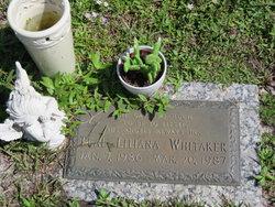 Teal Liliana Whitaker