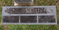 Zedock Abernathy