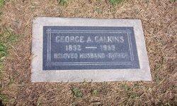 George Albert Calkins