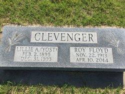 Lillie Anne <i>Yost</i> Clevenger