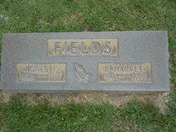 Benjamin Harvey Fields