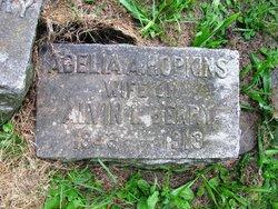 Adelia A. <i>Hopkins</i> Berry