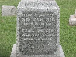 Lang Walker