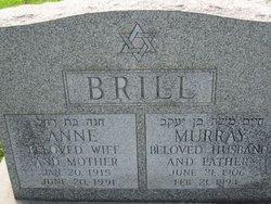 Murray Brill