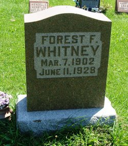 Forest F Whitney