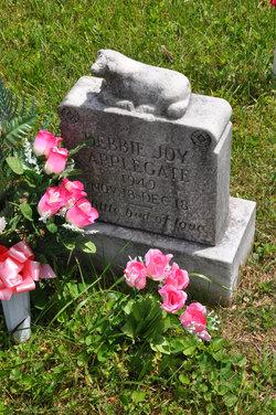 Debbie Joy Applegate