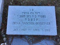 Dena <i>Yaschik</i> Bodziner