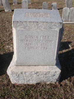 Sophia <i>Henrich</i> Brey