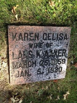 Karen Celisa Aaker