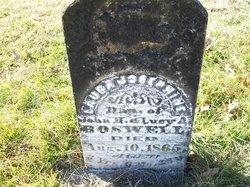 Laura Josephine Boswell