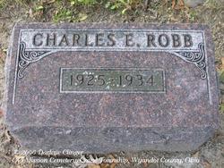 Charles E Robb