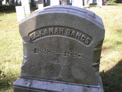 Elkanah Bangs