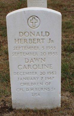 Donald Burns, Jr