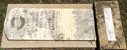 Sarah K. Sallie <i>Penry</i> Amick