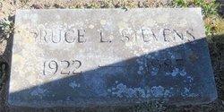 Bruce Larrabee Stevens