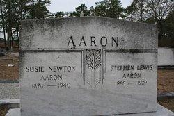 Stephen Lewis Aaron