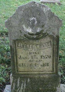 Alfred Milo White