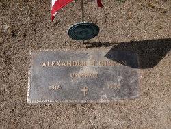 Alexander J Gibson