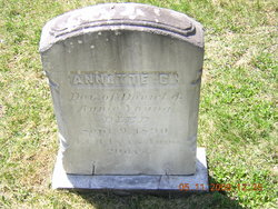 Annette C Young
