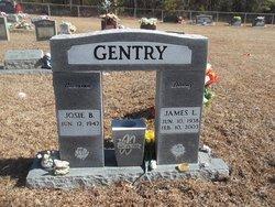 James Lee Jimmy Gentry