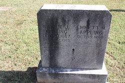 Emmett Madison Appling