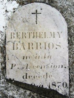 Barthelemy Julian Barrios