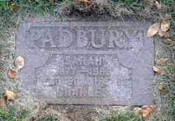 Sarah Ann <i>Taylor</i> Padbury